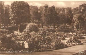 The Dingle Park, Shrewsbury Nice vintage English postcard
