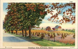 Fairmont Minnesota~Gambrel-Roof Banrs~Autumn Cornstalks on Farm~Greetings 1940s