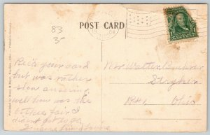 Napoleon Ohio~Birdseye of Rooftops~Arnold Hardware~Neighborhoods~1909 Postcard