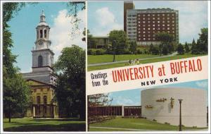 University of Buffalo NY