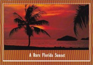 Florida Fort Walton Beach The Beautiful Color Of A Rare Florida Sunset