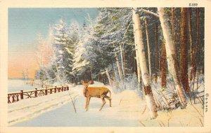 Deer in Snow Deer Glue on back paper glued on back