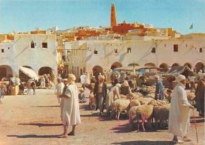 Algeria Chardaia La Place du Marche, Animals Sheeps Market Place