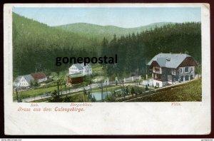 dc1490 - GERMANY Gruss aus dem Eulengebirge/ POLAND Gory Sowie 1900s Bergschloss