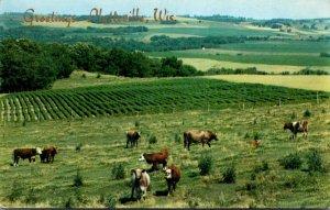 Wisconsin Platteville Greetings Rural Scene 1957