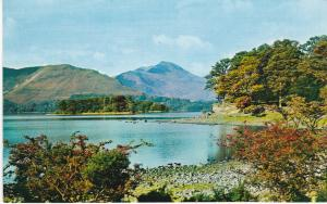 Post Card Cumbria Lake District Derwentwater from Broomhill Point