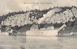 WIARTON , Ontario , Canada , 1914; Dominion Fish Co's Station