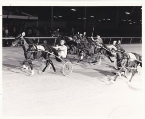LIBERTY BELL PARK, Harness Horse Race, AMOROUS WILL(7) wins, 1981