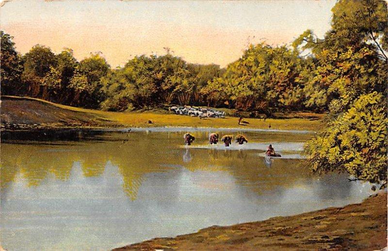 The Ford of River Jordan Jordan Unused