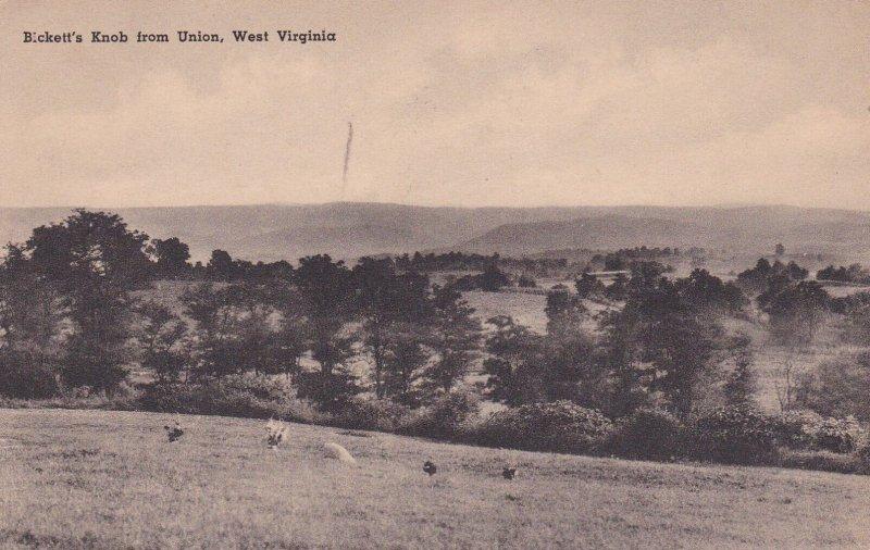 Bickett's Knob from UNION, West Virginia, PU-1953