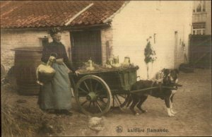 Flemish Milk Wagon Women Labor - Dog Drawn Working Dogs c1910 Postcard #7