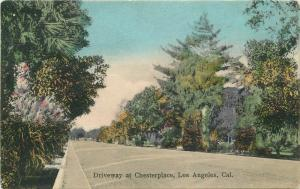 Driveway Chesterplace Los Angeles California 1908 Postcard Newman 1210