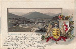 Herrenalb German Heraldry Shield Antique Almost 3D Raised Shield Postcard