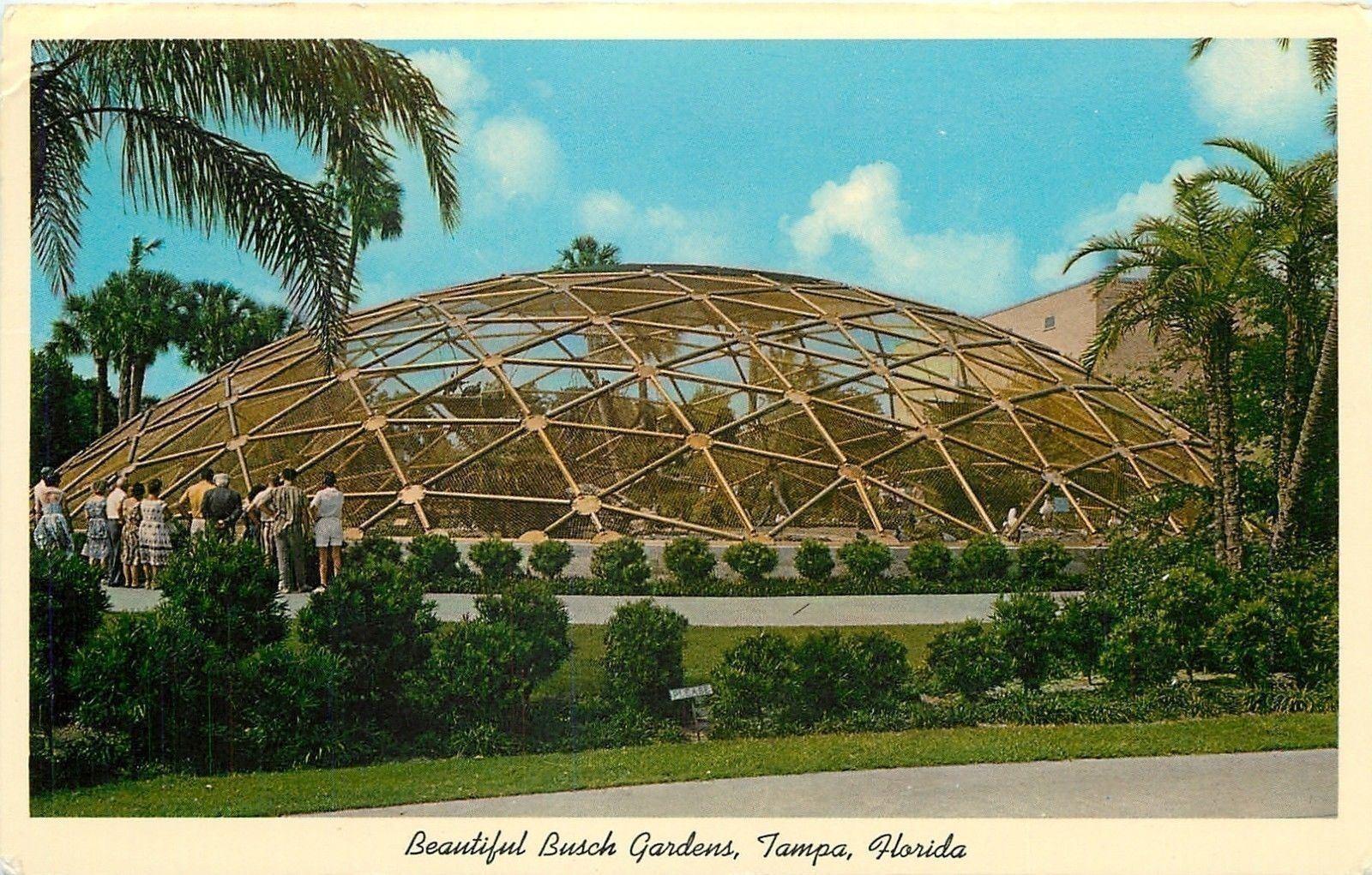 Tampa Florida~Beautiful Busch Gardens~Geodesic Dome~Rare Birds~1964 ...