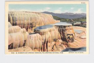 VINTAGE POSTCARD NATIONAL STATE PARK YELLOWSTONE MAMMOTH HOT SPRINGS TERRACES #1