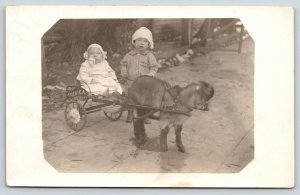 Real Photo Postcard~Little Goat Drawn Cart w/ Baby~See America First~c1910 RPPC