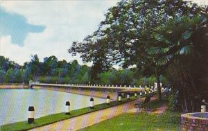 Singapore McRitchie Reservoir