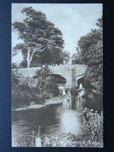 Devon Dartmoor CHAGFORD Children at Rushford Bridge c1907 B/W Postcard by Frith