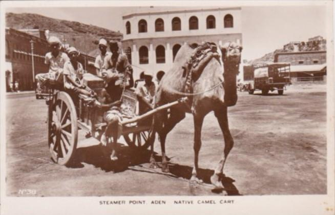 Yemen Aden Steamer Point and Native Camel Cart Real Photo