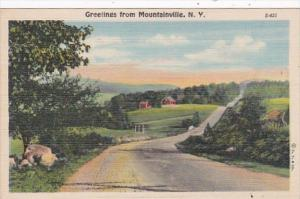 New York Greetings From Mountainville Curteich
