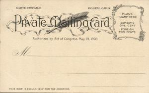 Hawaiian Islands, HONOLULU, Fort Street (1900) Private Mailing Card