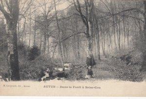 AUTUN, France, 1910-1920s, Dans la Foret a Brise-Cou