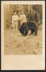 Two Older Men & A Bear RPPC Used c1938