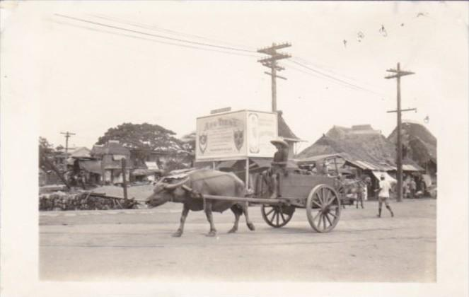 Philippines Manila Typical Ox Cart Real Photo
