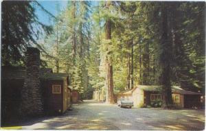 Redwood Lodge & Camp Big Sur South of Carmel California CA