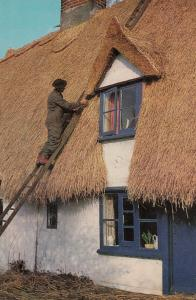 African Thatcher in Britain Thatching Crafts Postcard