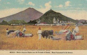 Farms ; MEXICO , Pyramids of Cholula , 00-10s