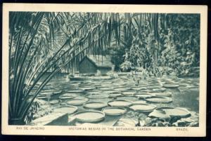 brazil, RIO DE JANEIRO, Botanical Garden, Victorias Regias, World Fair (1939)
