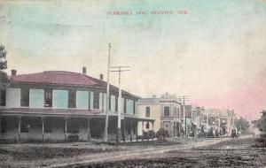 Stanton Nebraska Avenue Street Scene Historic Bldgs Antique Postcard K87392