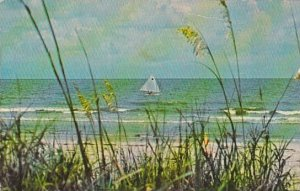 South Carolina Hilton Head Island Sea Oats Surf And Sailboat Sea Pines Planta...
