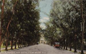 Palm Avenue and Royal Palm Hotel Miami Florida Curteich
