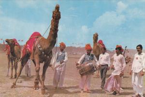 Dancig Camels, Music Players, LAHORE, Pakistan, 50-70's