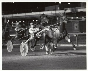 CICERO, Illinois, Sportsman's Park & Meadowlands Race Track, LU'S PRIORITY wins