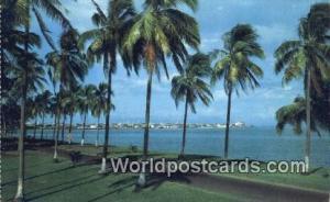 Panama Panama City Vista de la Ciudad