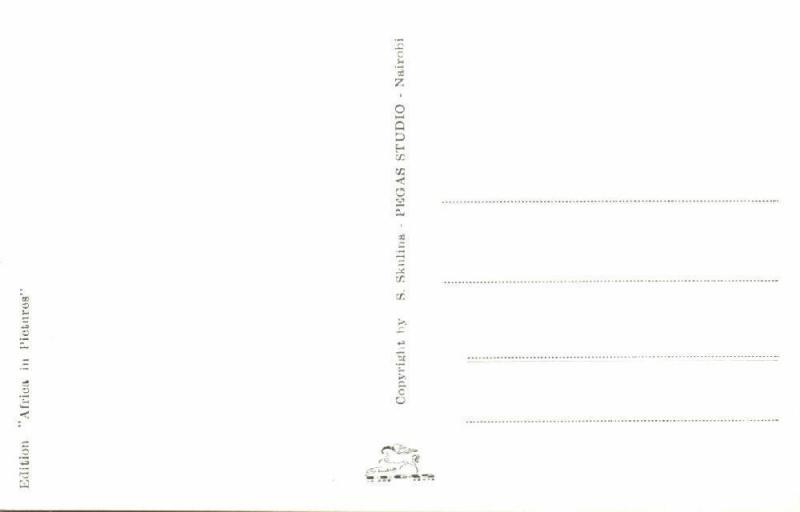 kenya, NAIROBI, General View, Smith, Mackenzie & Co. (1960s) Skulina RPPC