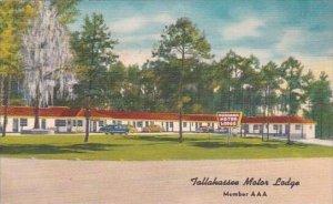 Florida Tallahassee Motor Lodge