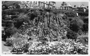 The Cascade Water Lilies Ventnor Isle of Wight