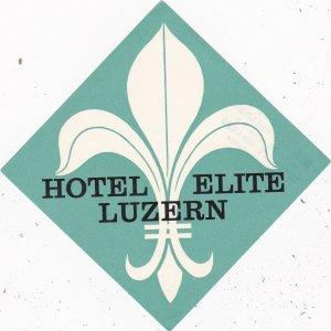 Switzerland Luzern Hotel Elite Vintage Luggage Label sk4218