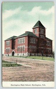 Hartington Nebraska~Hartington High School~Bare Trees Along Unpaved Road~c1910