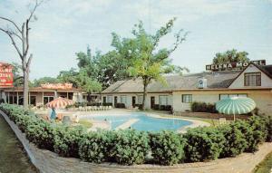 Houston Texas Helena Motel Pool View Vintage Postcard K825811