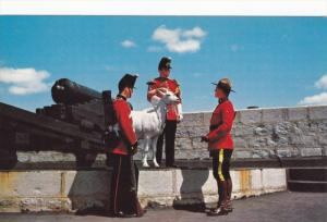 Royal Police, David the Goat Mascot, Canon, Old Fort Henry, Kingston Ontario,...
