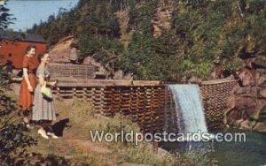 Fundy National Park New Brunswick Canada 1962