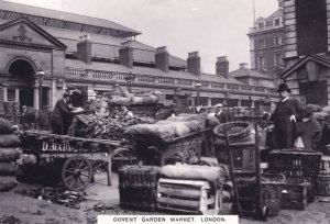 Vegetable Stalls Farming at Covent Garden London Postcard
