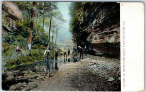 Starved Rock State Park, IL Postcard SCENE IN DEER PARK Outing Scene c1900s