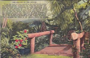 Florida Sarasota The Prayer Of The Woods Sarasota Jungle Gardens Curteich