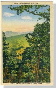 Smoky Mountains Nat'l Park,NC/TN Postcard,Thunderhead Mount